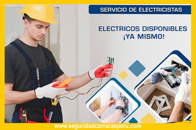 electricosecutronics